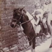 Maria, Dennis, and Dianne Karis (siblings) in Kingston
